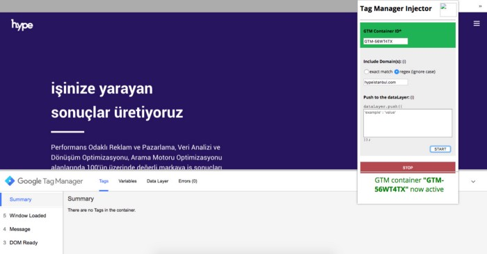 Tag Manager Injector Nedir